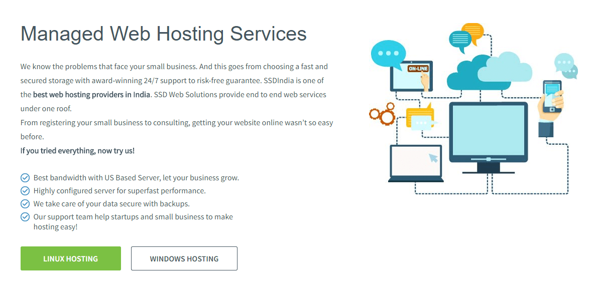 SSD Web Solutions Review (Hosting)