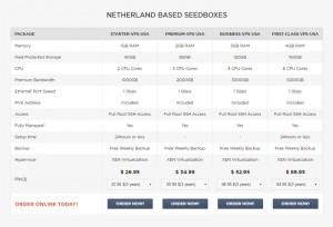 Temok Seedbox Server