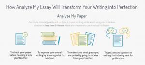 Analyze Academic Help Review